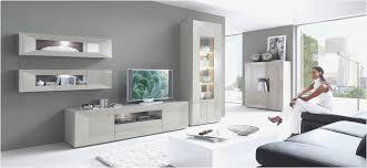 graue wandfarbe wohnzimmer caseconrad