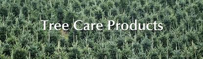 Balsam Christmas Tree Care by Care