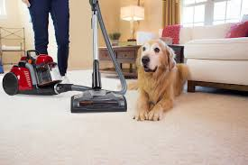 Roomba For Hardwood Floors Pet Hair by The Ultimate Guide To Buying The Best Vacuum For Pet Hair