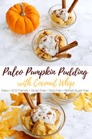 Pumpkin Pudding Paleo by Creamy Paleo Pumpkin Pie Pudding With Coconut Whipped Cream Paleo