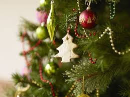 What Trees Are Christmas Trees by Coping With A Christmas Tree Or Pine Tree Allergy