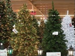 Menards Christmas Trees White by Menards Garden Center