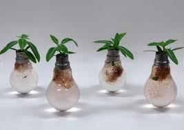 light bulb can you recycle light bulbs inspiring ideas creative