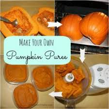 Preparing Fresh Pumpkin For Pies by How To Cook A Pumpkin Pumpkin Pie Puree Recipe Pureed Recipes