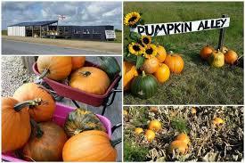 Peppa Pig Pumpkin Carving Ideas by Pumpkin Carving Ideas 78 Ways To Create A Brilliant Halloween