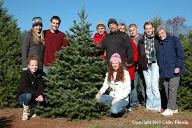Eustis Christmas Tree Farm by New Jersey Christmas Tree Farms Christmas Lights Decoration