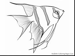 Brilliant Underwater Sea Life Coloring Pages With And Realistic