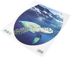 schildkröte bicaquu 2 stücke lustige wc aufkleber seaworld