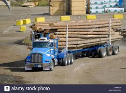 Logging Trucks Transport Lumber Forestry Logging Wood Industry Stock ... Gus From Oz Model Wood Trucks Bigmatruckscom Pizza Food Truckstoked Wood Fired Built By Apex Daphne The Dump Truck A Wooden Toy With Movable Bed Bed Options For Chevy C10 And Gmc Trucks Hot Rod Network Handmade Wooden Toy Usps Delivery Truck Big 24 Awesome Woodworking Plans Free Egorlincom Play Pal Pickup Toys And Trailer Set Rory Goldfish Toyshop Crazy Cool All Hand Built In Garage Automotive Wonder Universal Steering Wheel Effect Grain Style Overlay Cover Photos Of Side Rails Wanted Mopar Flathead Forum