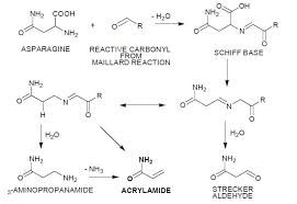 Acrylamide In Food Products A Review