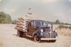 1939 Dodge Truck Hauling Sacks Of Grass Seed In The Early 40's, On ... 391947 Dodge Trucks Hemmings Motor News 85 Stake Bed Pick Up Truck 1939 Bed Pi Flickr A Job Well Done 1942 Pickup Dodges 19394 Registry Display 15 Ton Great Northern Railway Maintence Dump Truck Restored Rat Rod T187 Harrisburg 2016 1945 Review Top Speed Hunter Dcjr Lancaster Pmdale Ca Pepsi Delivery Archives Pinterest This Airplaengine Plymouth Is Radically Radial Pickups Logistic Utility Cargo And Transport To 1947 For Sale On Classiccarscom