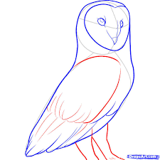 How To Draw A Barn Owl, Step By Step, Birds, Animals, FREE Online ... How To Draw Cartoon Hermione And Croohanks Art For Kids Hub Elephants Drawing Cartoon Google Search Abc Teacher Barn House 25 Trending Hippo Ideas On Pinterest Quirky Art Free Download Clip Clipart Best Horses To Draw Horses Farm Hawaii Dermatology Clipart Dog Easy Simple Cute Animals How An Anime Bunny Step 5 Photos Easy Drawing Tutorials Drawing Art Gallery Kitty Cat Rtoonbarndrawmplewhimsicalsketchpencilfun With Rich