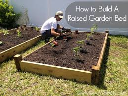 how to build a raised garden bed building a raised bed garden with