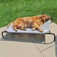 outdoor coolaroo dog bed create a healthier environment for your