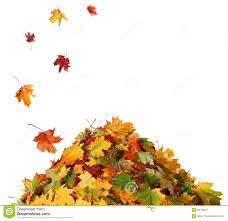 Pile of leaves and rake clipart with transparent background