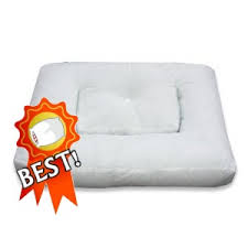 Anti snoring pillow reviews Pillow Advisor