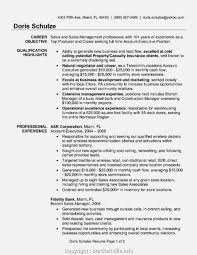 Sales Account Executive Resume Samples Velvet Jobs Format For ... Executive Resume Samples Australia Format Rumes By The Advertising Account Executive Resume Samples Koranstickenco It Templates Visualcv Prime Financial Cfo Example Job Examples 20 Best Free Downloads Portfolio Examples Board Of Directors Example For Cporate Or Nonprofit Magnificent Hr Manager Sample India For Your Civil Eeering Technician Valid Healthcare Hr Download