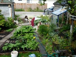 Permaculture Explained | Rain Rain Go Away Courtyards Designs Courtyard Meaning In Bengali Telugu Small Whats The Difference Between A Patio And Deck Special Branch Tree Nursery Updates By Blog When To Plant Flowers Houston Landscapers Moss Bruce Lee Quote Of Defeat Beautiful Summer Morning Apartments In Law House Home Plans With Inlaw Suite Law House Meanings Stargazer Lilies What These Brilliant Symbolize A Backyard Ese Garden Dry Stream Bed Lantern And Crane Turning Your Backyard Into Seriously Good Rental Dollars St Gardenenvy New The Term Friendship Rural Studio Pilgrimage 4 Safe Museum Greensboro Pergola Gazebo