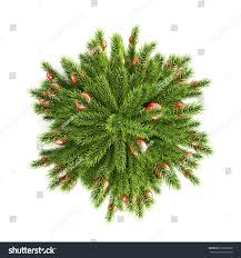 Xmas Tree Watering Devices by Christmas Tree Christmas Balls Top View Stock Illustration