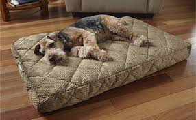 dream lounger memory foam dog bed dog beds dream lounger