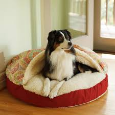 Pet Stairs For Tall Beds by Orthopedic Dog Products Dog Ramps Beds Snoozer