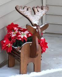 weihnachtsstern verliert blätter die ursachen mein
