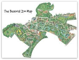 chambre d hote pres du zoo de beauval chambre d hote pres du zoo de beauval top 10 reasons for visiting