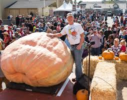 Pumpkin Patch San Jose California by Massive 2 363 Pound Pumpkin Sets New Record Wins Top Honors At