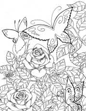 Butterfly Garden Coloring Pages For Adults