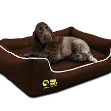 Excellent 6 Extra Dog Beds For Xlxxl Breeds Reviewed With