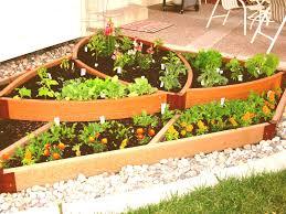 Planter Box Vegetable Garden Backyard Herb And