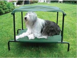 breezy bed large dog bed with canopy petslu