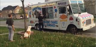 Canadian Pit Bull Politely Waits In Line For Ice Cream - Album On Imgur