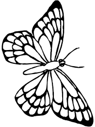 Photo Collection Beautiful Butterfly Coloring Pages