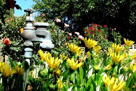 Replace The Valve On A by A Tutorial On Sprinkler Valve Replacement
