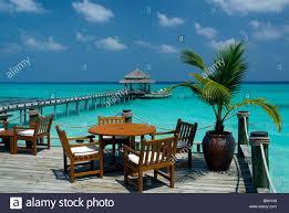 100 Kuramathi Island Maldives Bar Restaurant Area Blue Lagoon Resort