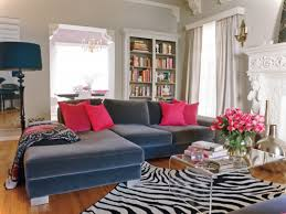 Zebra Print Bedroom Decorating Ideas by Wayfair Coupon Animal Print Living Room Decor Home Accessories