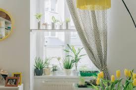 diy fensterregal wie du deinen pflanzen einen hellen platz
