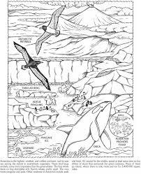 Antarctica Animials Coloring Page