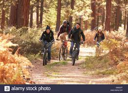 Group Of Friends Riding Bikes On A Forest Path Front View