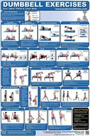 Follow The Posters Illustrations And Descriptions For Variations On Crunches Lunges Squats Calf Raises Round Out Your Routine With Bench Press