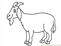 Fancy Ideas Goat Animal Coloring Pages Page 10 Animals Free Printable For