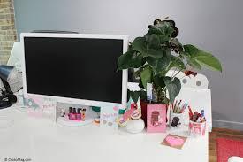 plante de bureau l anthurium la plante à fleurs de mon bureau