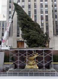 Wonder What Kind Of Tree Stand They Use For The Famously Big In Rockefeller Center Associated Press