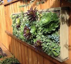 Pallet Wood Vertical Planting With Succulents