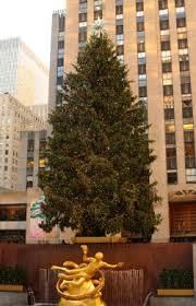 Christmas Tree Lane Alameda 2014 by 14 Christmas Tree Lane Alameda 2014 100 Mike Wazowski
