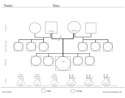 Template Genogram For Social Workers Lovely Family Word Regarding Templates Symbols