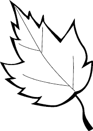 Sheet Leaves Marijuana Coloring Pages For Kids Printable