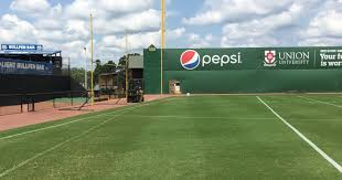 Ballpark In Jackson Goes From Baseball To Football For SportsPlus ... Hartford Yard Goats Dunkin Donuts Park Our Observations So Far Wiffle Ball Fieldstadium Bagacom Youtube Backyard Seball Field Daddy Made This For Logans Sports Themed Reynolds Field Baseball Seven Bizarre Ballpark Features From History That Youll Lets Play Part 33 But Wait Theres More After Long Time To Turn On Lights At For Ripken Hartfords New Delivers Courant Pinterest