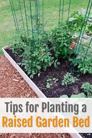 Raised Bed Soil Calculator by Tips For Planting A Raised Garden Bed